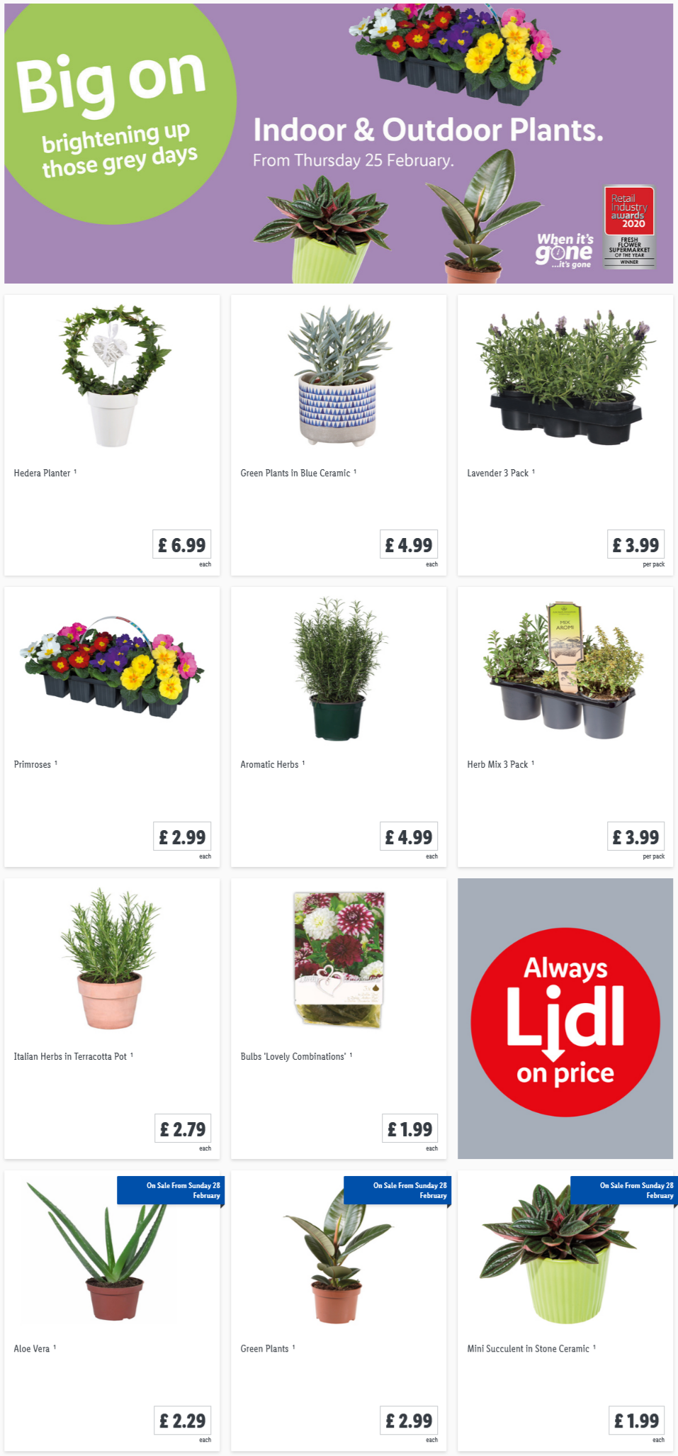 Preview LIDL Indoor & Outdoor Plants Offers for your garden valid from 25/2/2021