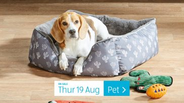 Aldi Special Buys Thursday, 19th August 2021 Pet