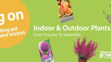 LIDL Indoor & Outdoor Plants Offers from Thursday, 16th September 2021