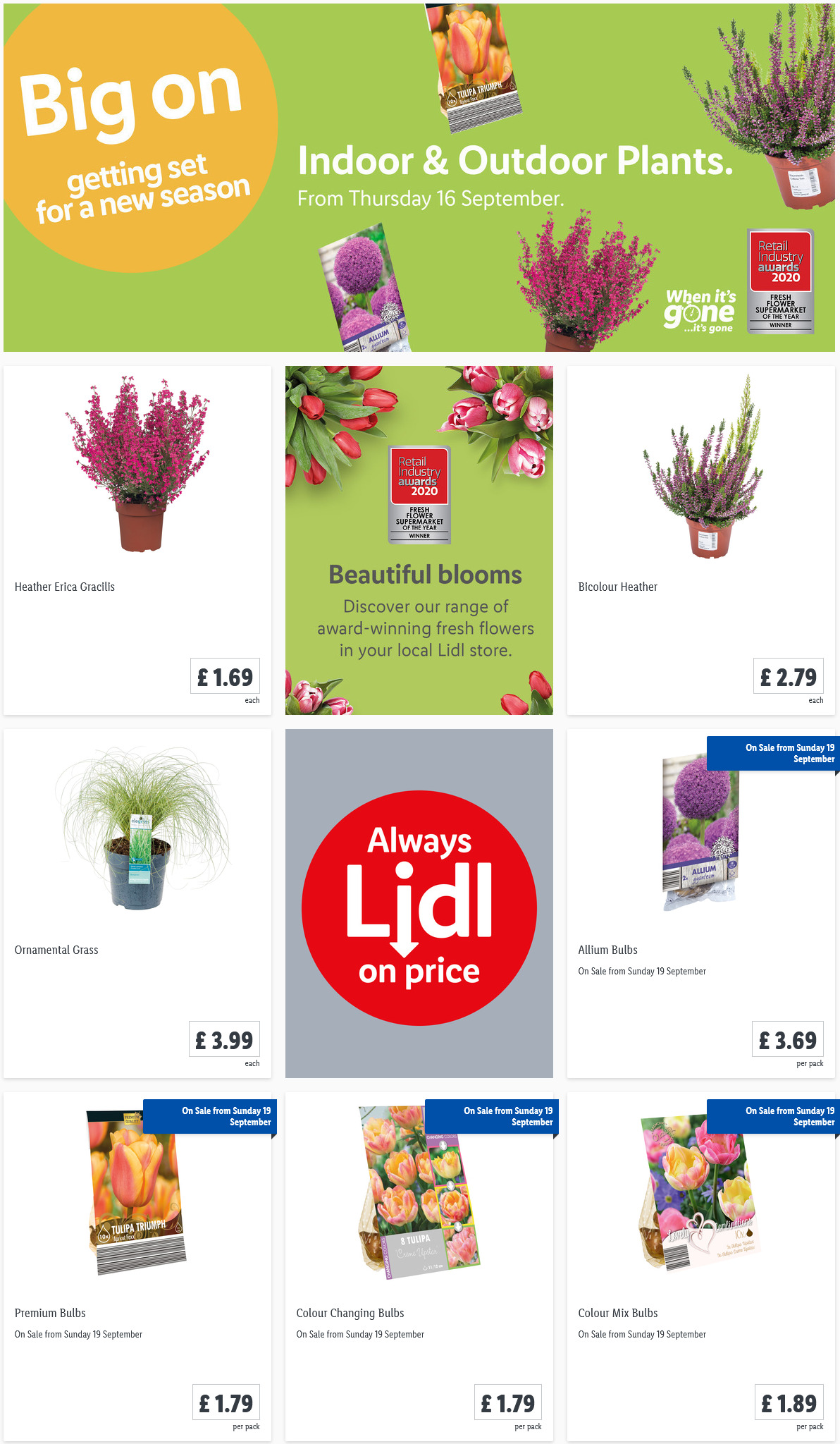 PreviewLIDL Indoor & Outdoor Plants Offers from your garden valid from 16/9/2021