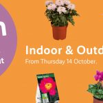 LIDL Indoor & Outdoor Plants Offers from Thursday, 14th October 2021