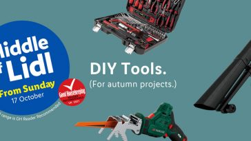 LIDL DIY Tools Offers From Sunday, 17th October 2021